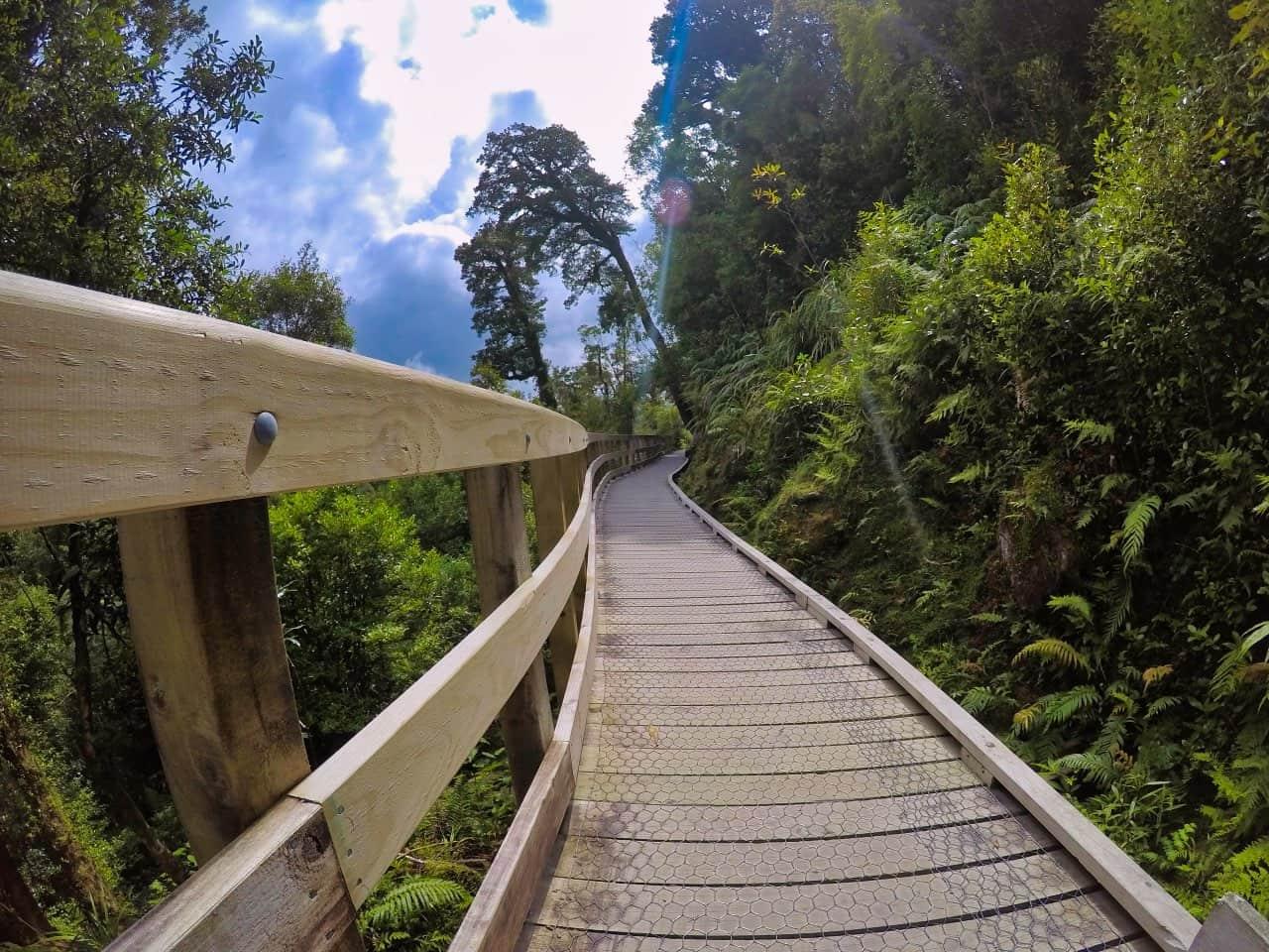 Hokitika-Gorge-Swingbrigde-Trail