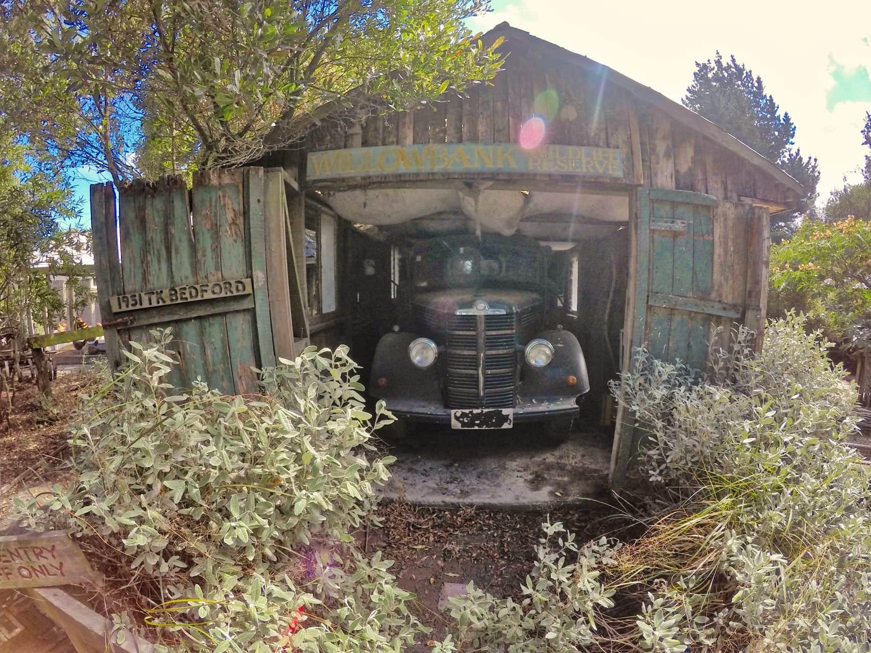 Old-Car-Willowank-Wildlife-reserve-Chritchurch