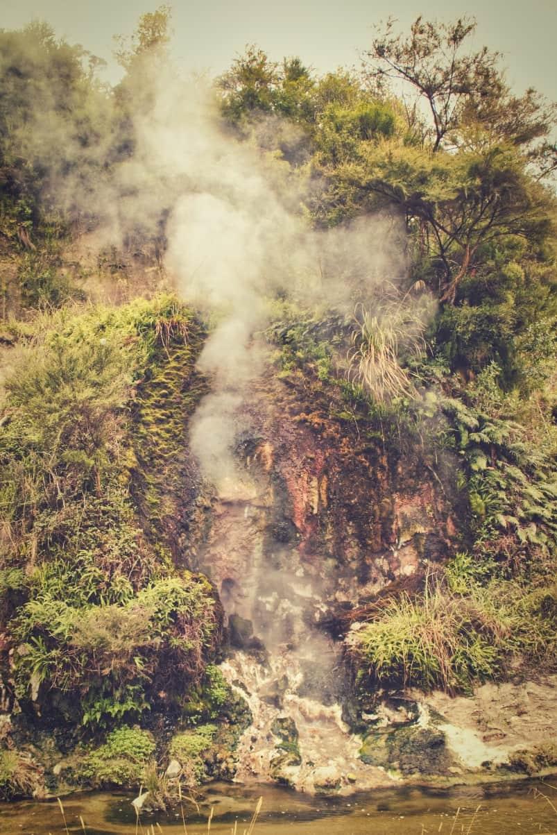 Waimangu-Volcanic-Valley-7