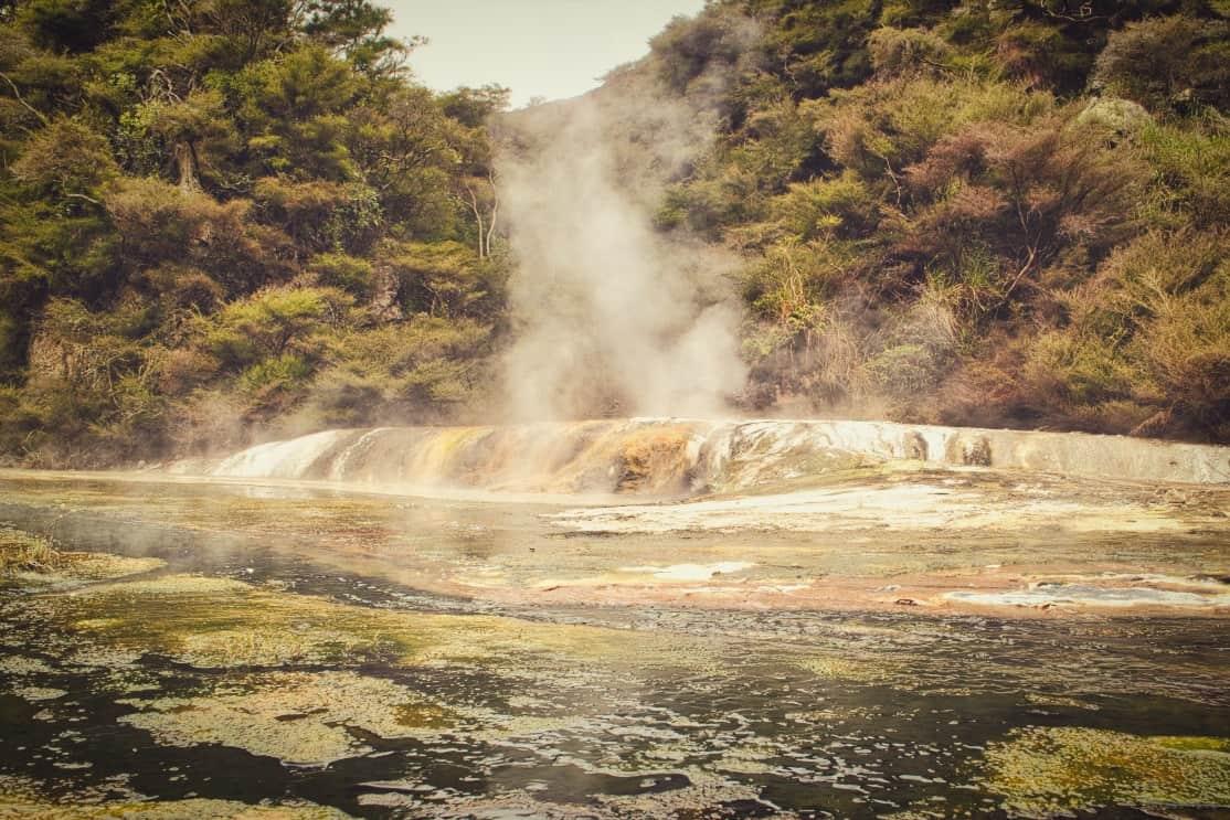 Waimangu-Volcanic-Valley-9