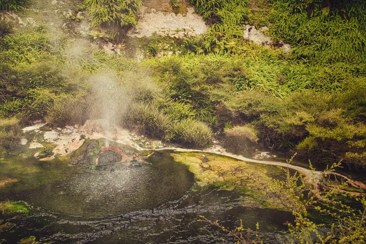 Waimangu Volcanic Valley mini geysire new zealand