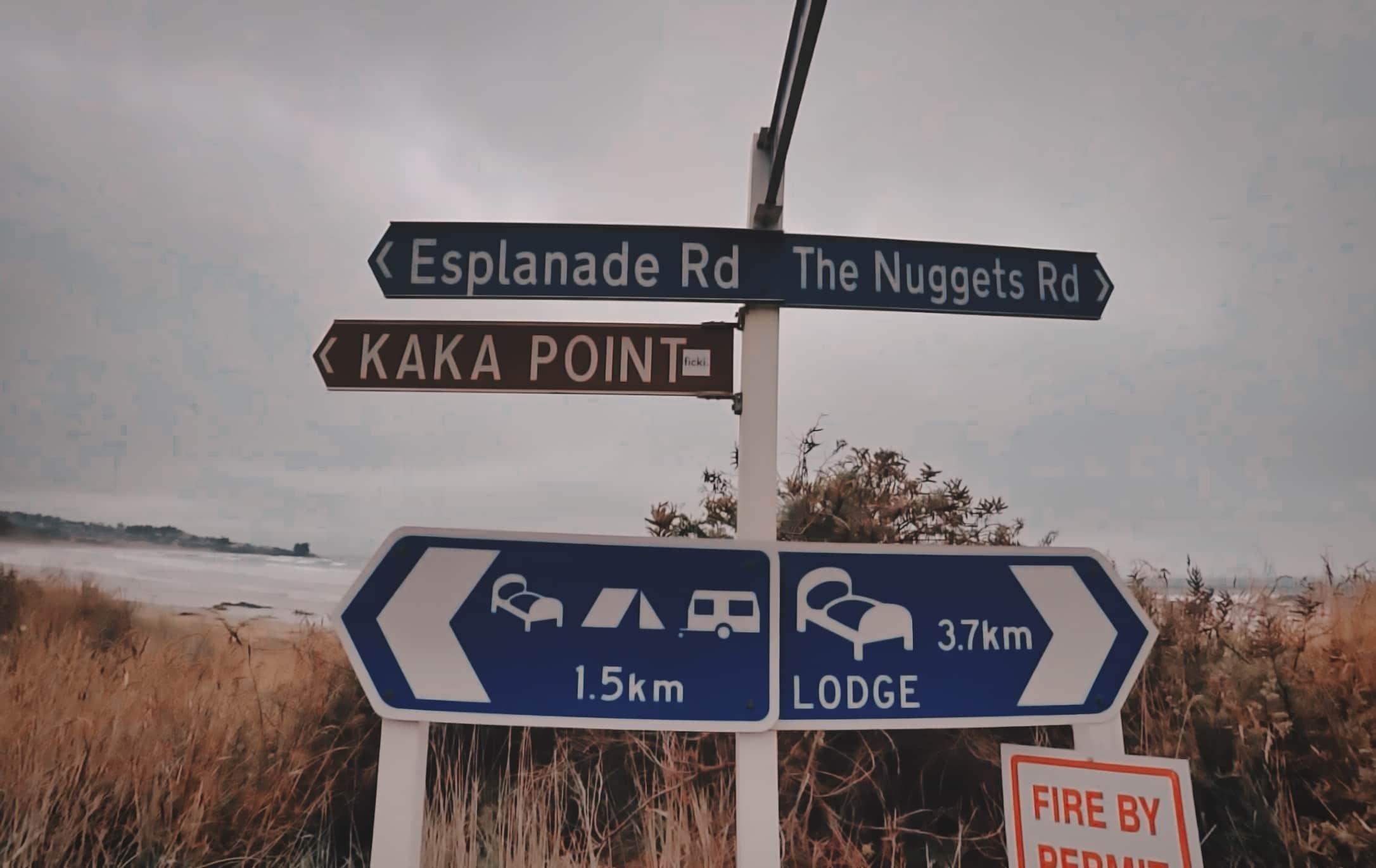 Kaka-Point-New-Zealand