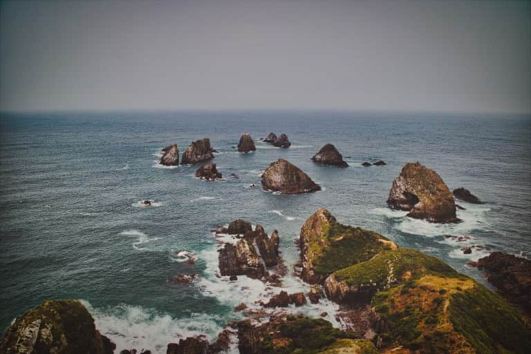 Nugget Point new zealand 2019 fog