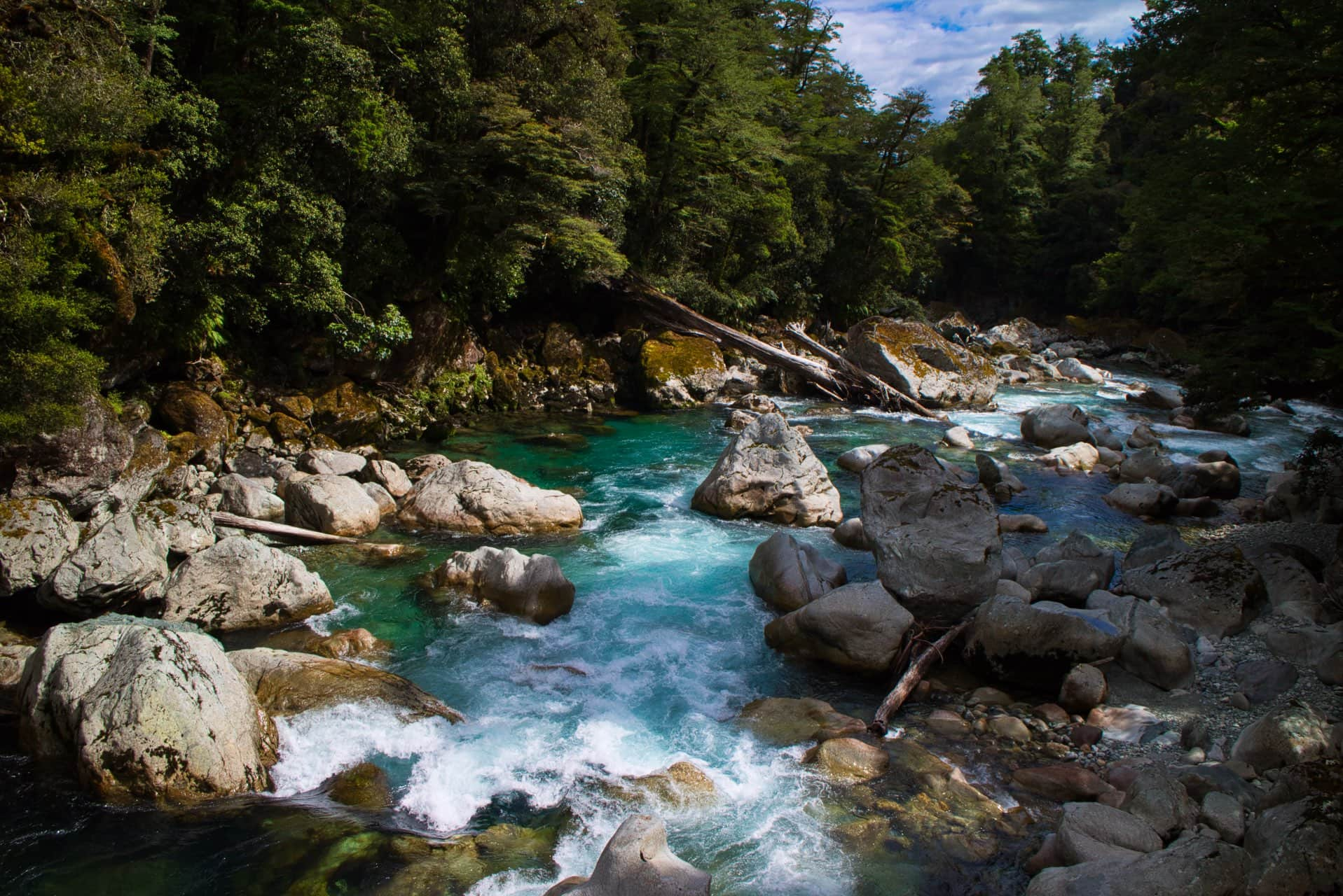 Moraine-Creek-Southland-Fiordland-National-Park-Milford-Sound-Highway-Southland